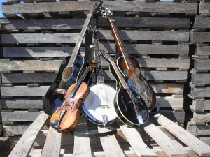 bluegrassinstruments